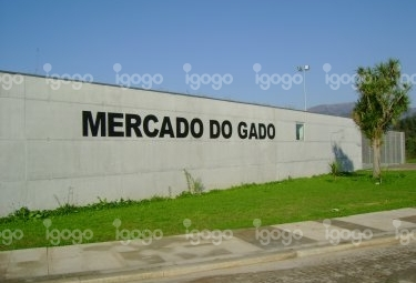 Mercado do Gado de Ponte de Lima